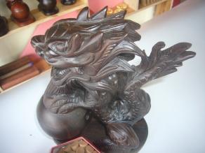 Phan Ngọc Lợi (11)